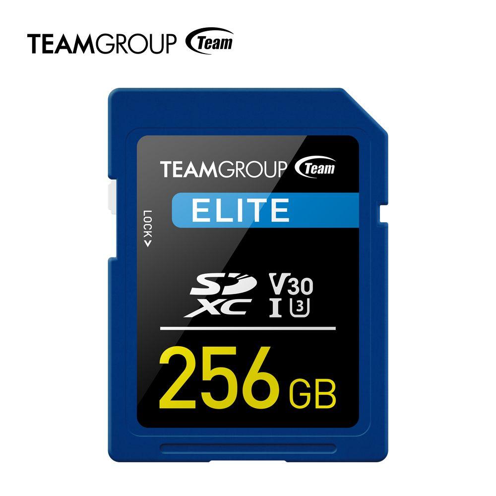 Team Group Elite SDXC 256 GB